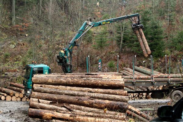Ceny dreva poriadne stúpli.