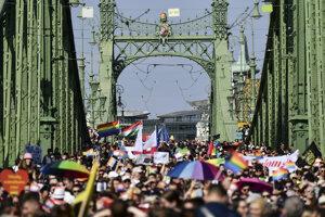 Demonštrácia na podporu homosexuálnych menšín v centre Budapešti 24. júla.