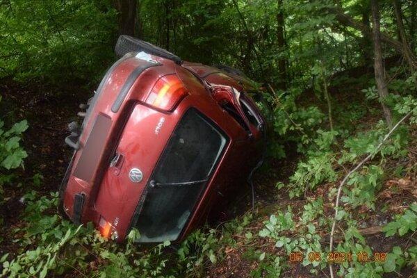 Auto vyletelo z cesty.
