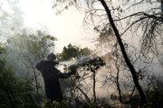 S plameňmi bojuje 427 hasičov vrátane 143 z Poľska.