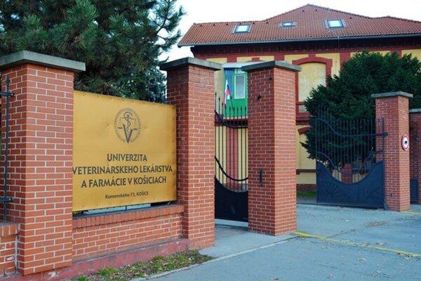Univerzita veterinárskeho lekárstva a farmácie otvorila nový akademický rok.