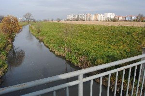 Upravená časť toku medzi Vrábľami a Dyčkou.