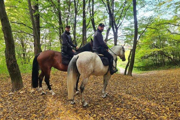 Policajti na koňoch v Národnej prírodnej rezervácii Humenský sokol.