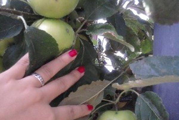Ovocie je nielen menej, ale má aj nižšiu kvalitu.