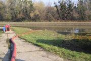 Vodu z Bodrogu odčerpávajú do mŕtveho ramena pomocou potrubia.