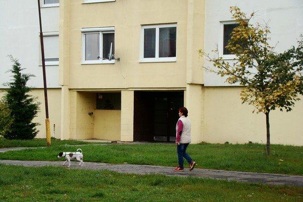 V meste chýbajú ľuďom vyhradené plochy, kam by mohli ísť so psom.