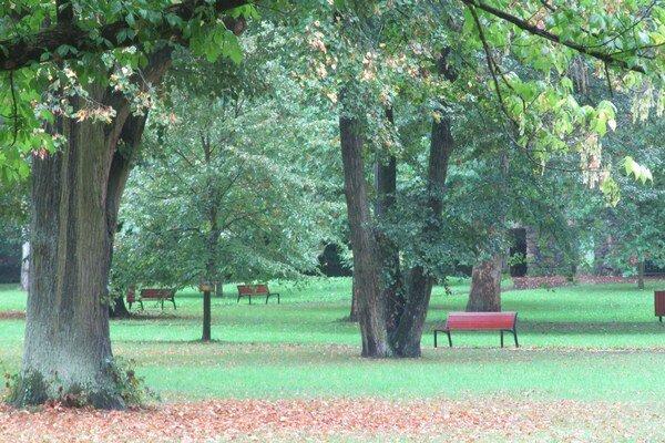 Lavičky plánujú vymeniť v celom parku.