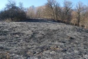 Rozsiahly požiar spôsobilo vypaľovanie trávy.
