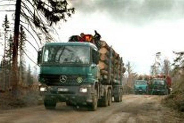 Vlani v marci nadobudlo účinnosť nariadenie, podľa ktorého  je zakázané umiestniť nelegálne drevo alebo výrobok z neho  na vnútorný trh EÚ.
