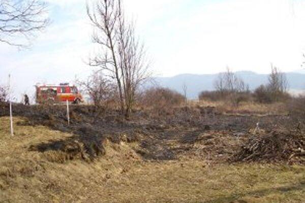 V sobotu horel trávnatý porast v Olešnej.