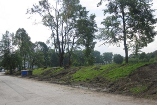 Zničený park budú čoskoro krášliť drevené sochy.