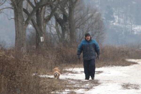 Na prechádzku so psom si nezabudnite zobrať aj vrecká. Inak vám hrozí pokuta.