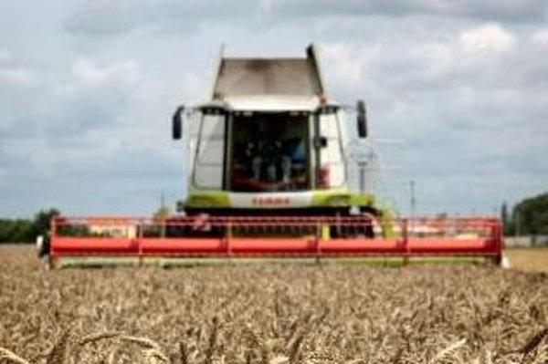 Pestovatelia avízujú nedostatok obilia.