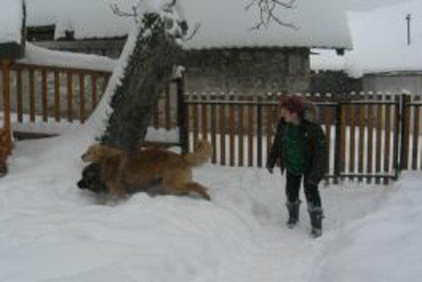 Lazy na Kysuciach sú zapadnuté snehom rovnako. Rozdielny je prístup starostov obcí.