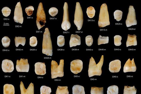 Nález prehistorických zubov moderného človeka z Číny.