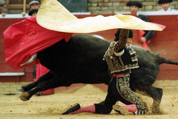 Býčie zápasy sú dodnes na Pyrenejskom polostrove kontroverznou témou, majú svojich odporcov i obdivovateľov.