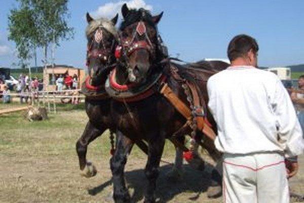 Kráľovská disciplína ukáže, ktoré kone sú najmocnejšie.