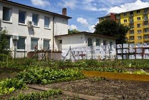 Prvá bratislavská komunitná záhrada v Krasňanoch.