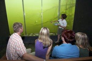 Atrakciou centra je pozorovanie života rôznych dunajských rýb pod vodou bez ponorenia sa na vybudovanom Zámockom ostrove.