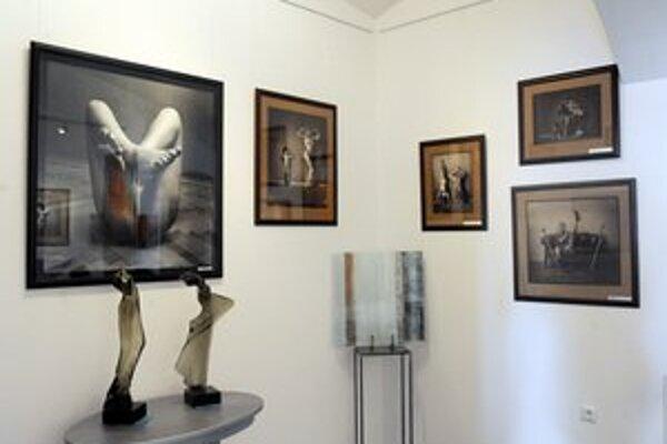Z výstavy v Levinne Art + Design Gallery v centre Bratislavy.