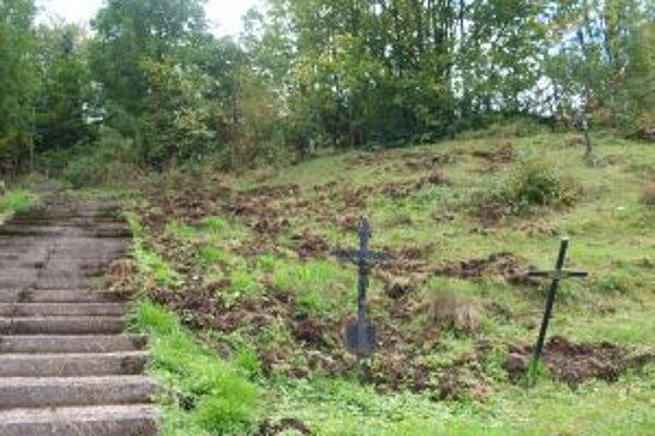 Diviaky sa pustili do starších hrobových miest.