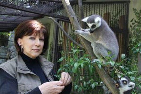 Rodená Banskobystričanka Miloslava Šavelová prebrala vedenie bratislavskej zoo v roku 1991. Záhrada potom prešla reorganizáciou. Na snímke je s lemurom, ktorý bežne žije len na Madagaskare.