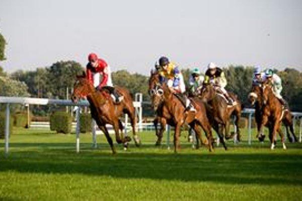 V Petržalke sa v nedeľu uskutoční posledný dostihový míting roku 2010.