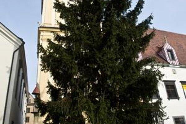 Vianočný strom na Hlavnom.