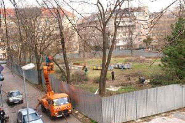 Aktivisti a donedávna ešte aj Staré Mesto však tvrdili, že na výrub potrebuje investor stavebné povolenie na celú stavbu.
