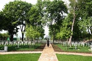V samostatných hroboch je pochovaných 331 vojakov deviatich identifikovaných národností, slovenská a česká národnosť nie sú na cintoríne rozdelené, vojaci majú československú národnosť. Zomreli prevažne v posádkovej nemocnici Bratislava, ďalší v divíznej