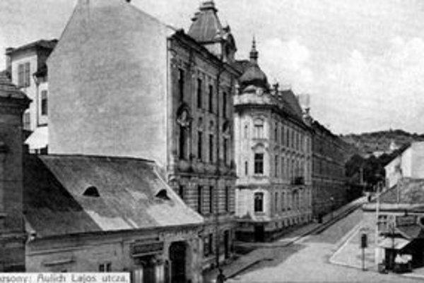 Dnešná Križkova ulica ako spojnica na Hlbokú cestu jestvovala už v 17. st. ako cesta na Kalváriu. Viaceré domy na nej už zanikli.