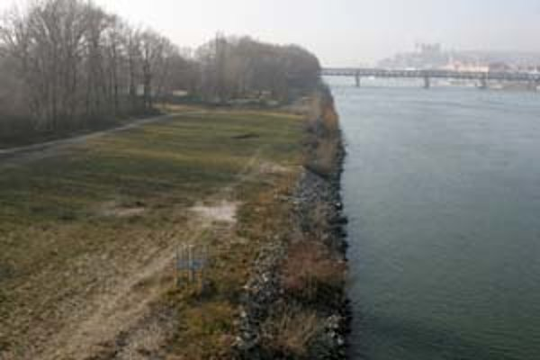 V jednom z variantov koordinácie tratí železnice a nosného systému MHD chýba zastávka nosného systému v Petržalke medzi nábrežím a diaľnicou. Pritom medzi Starým a Prístavným mostom má vyrásť celomestské centrum Petržalka.