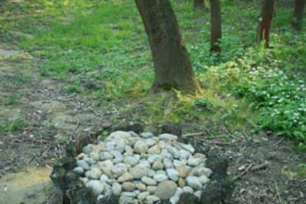 Nelegálny psí cintorín medzi Veľkým a Malým Draždiakom.