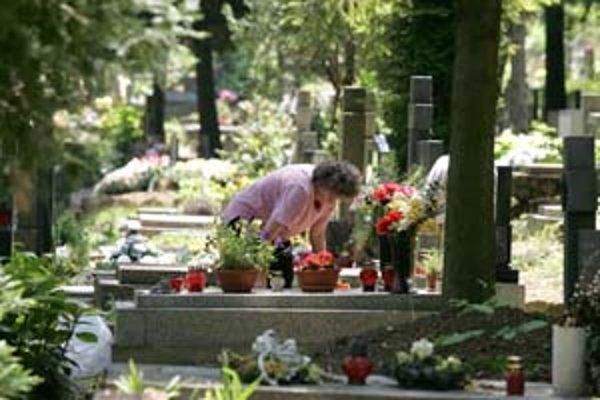 Krádeže kvetov a svietnikov sú rozšíreným problémom na cintorínoch, čoraz častejšie sa však starším ľuďom snažia vnútiť svoje služby kamenári, ktorí pracujú načierno.