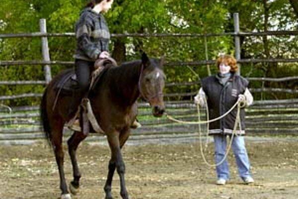 V Bratislave môže mládež tráviť leto napríklad aj s koňmi, naučiť sa na nich jazdiť a starať sa o ne. Takúto možnosť ponúka Bratislavské kultúrne a informačné centrum.