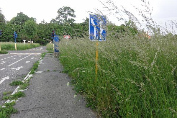 Takto vyzeralo dopravné ihrisko vlani v máji, keď ho mali kosiť neskôr zrušené Záhradnícke služby.