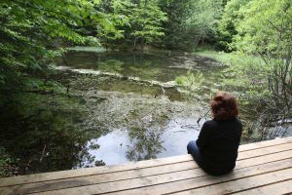 Jednou z najkrajších častí trasy je Ortútske jazierko