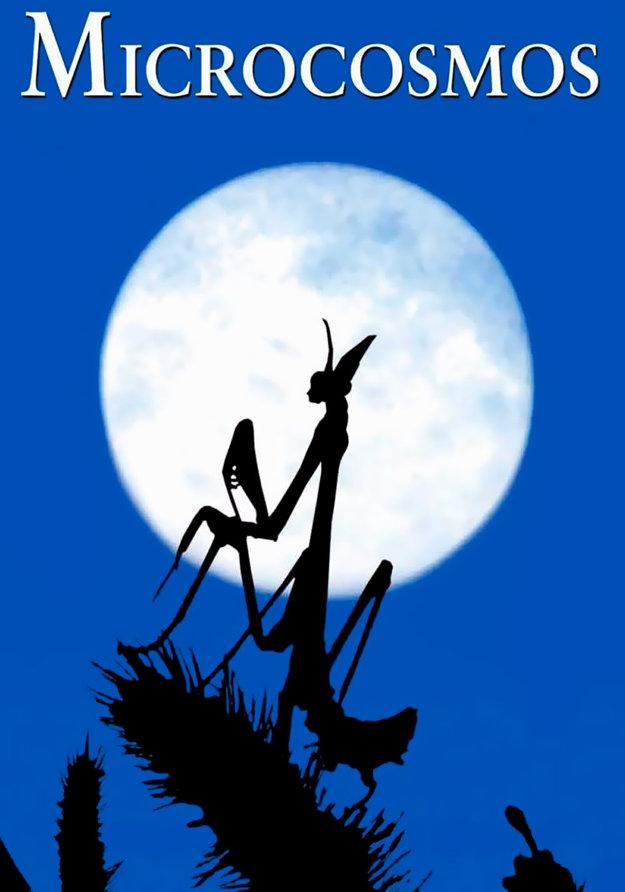 A znovu, spln mesiaca.