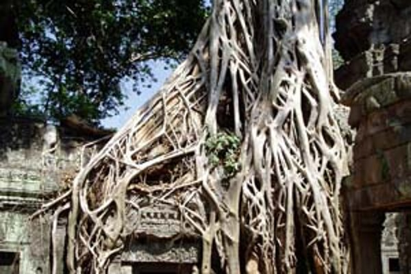 Ako do Angkoru
