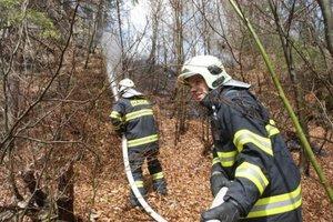 Riziko vzniku lesných požiarov je v týchto dňoch veľké.