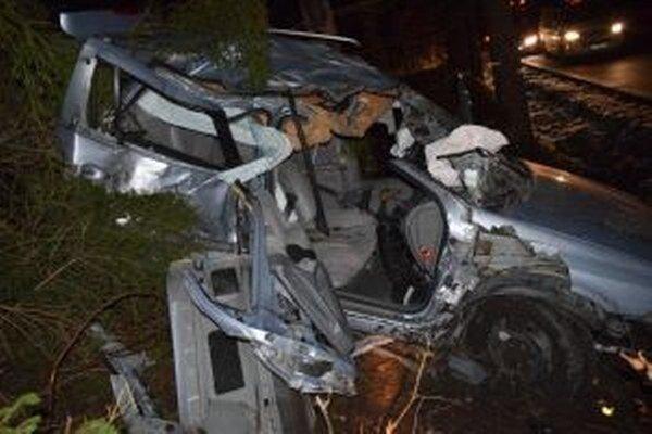 Vodiča previezli do nemocnice, jeho kamarát zomrel.