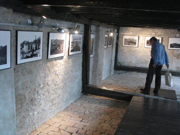 Výstava v Trnave potrvá do 17.  júna.