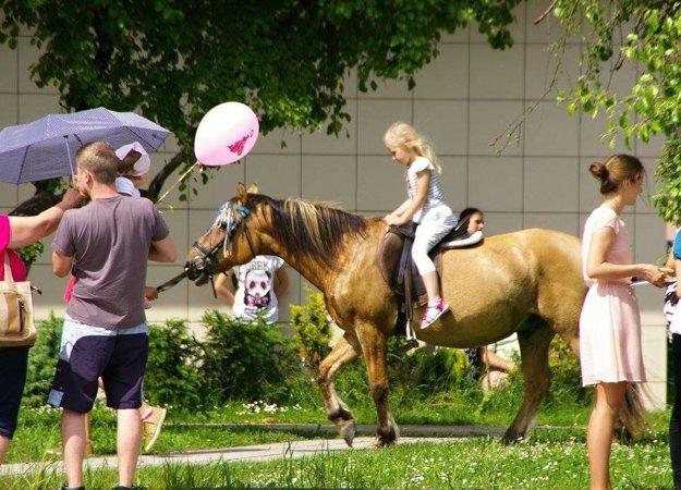 Deti si mohli zajazdiť aj na koníkoch.