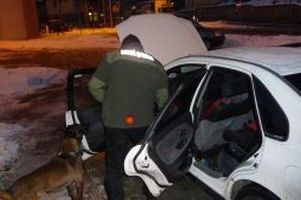 Služobné psy na colných úradoch sú neodmysliteľnou súčasťou pri vyhľadávaní nelegálneho tovaru v dopravných prostriedkoch, batožine aj v objektoch.