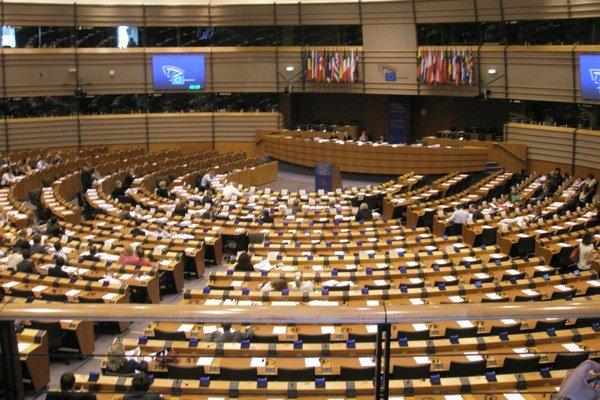 Európsky parlament sa skladá zo 766 poslancov zvolených v 28 členských štátoch rozšírenej Európskej únie.
