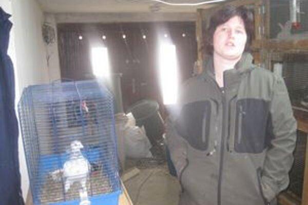 Veterinárka Mária Gábelová zachránila holuba náročnou dvojmesačnou liečbou. Našla mu aj nového majiteľa.