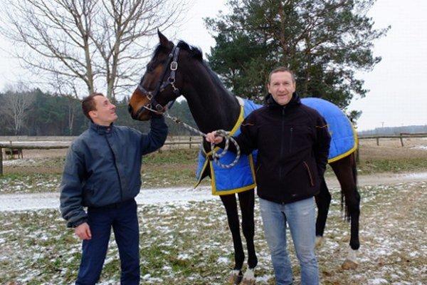 Spokojný Kilword po tréningovej jednotke v spoločnosti svojho trénera Petra Hlavenku (vpravo) a džokeja Roberta Šaru.