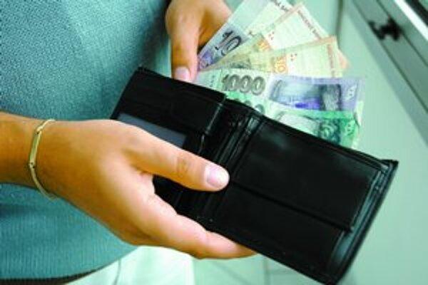 Slovenská koruna by si do uzavretia výmenného kurzu v roku 2008 mohla ešte polepšiť.