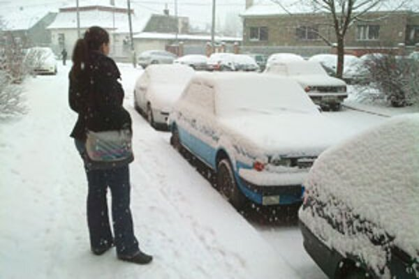 Snehu je stále veľa a posledné dni opäť snežilo.