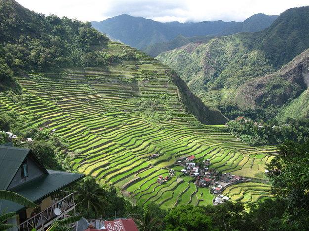 Terasovité ryžové polia v Batade.
